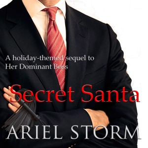 Explicit Excerpt from Secret Santa by Ariel Storm